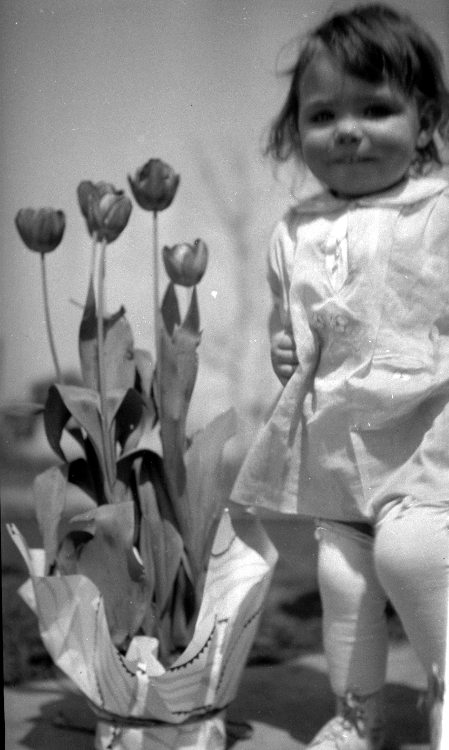 ann and tulips
