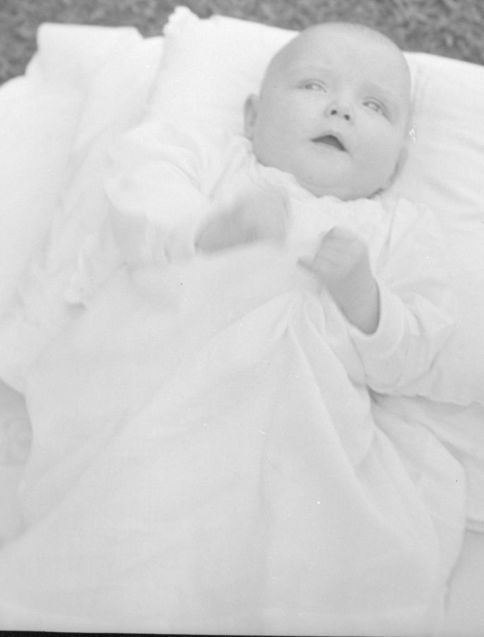 baby ann 5
