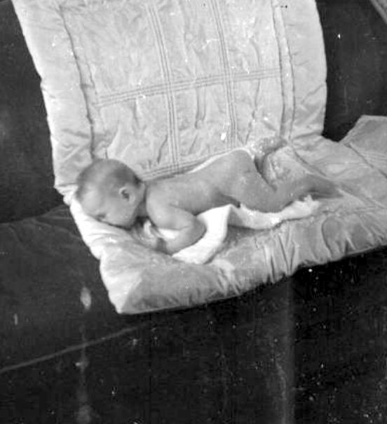 baby sandorf 1