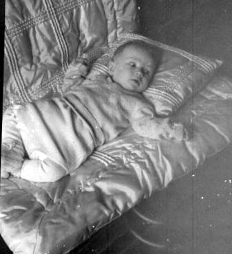 baby sandorf 6 1