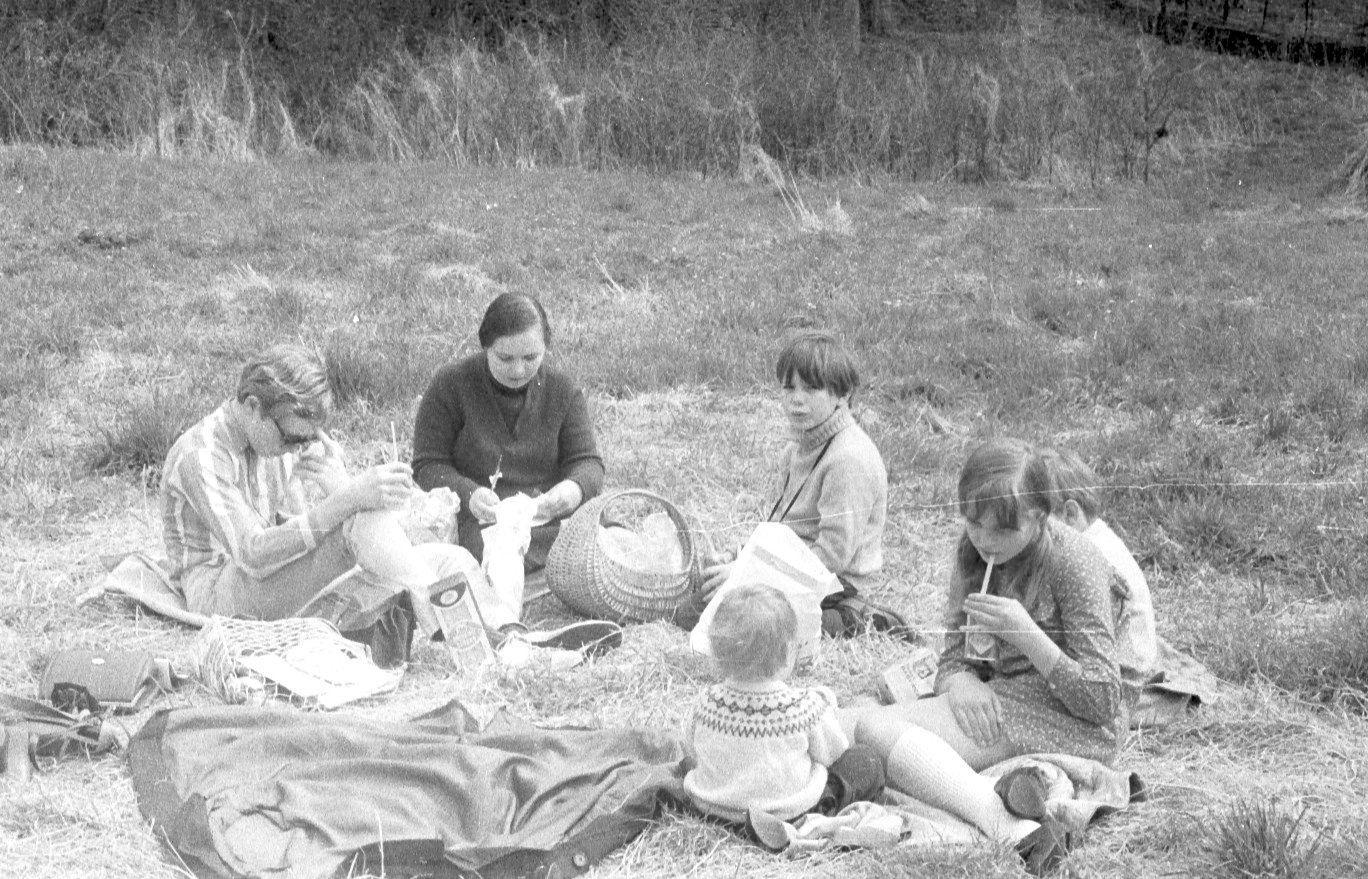 more sullivan picnic