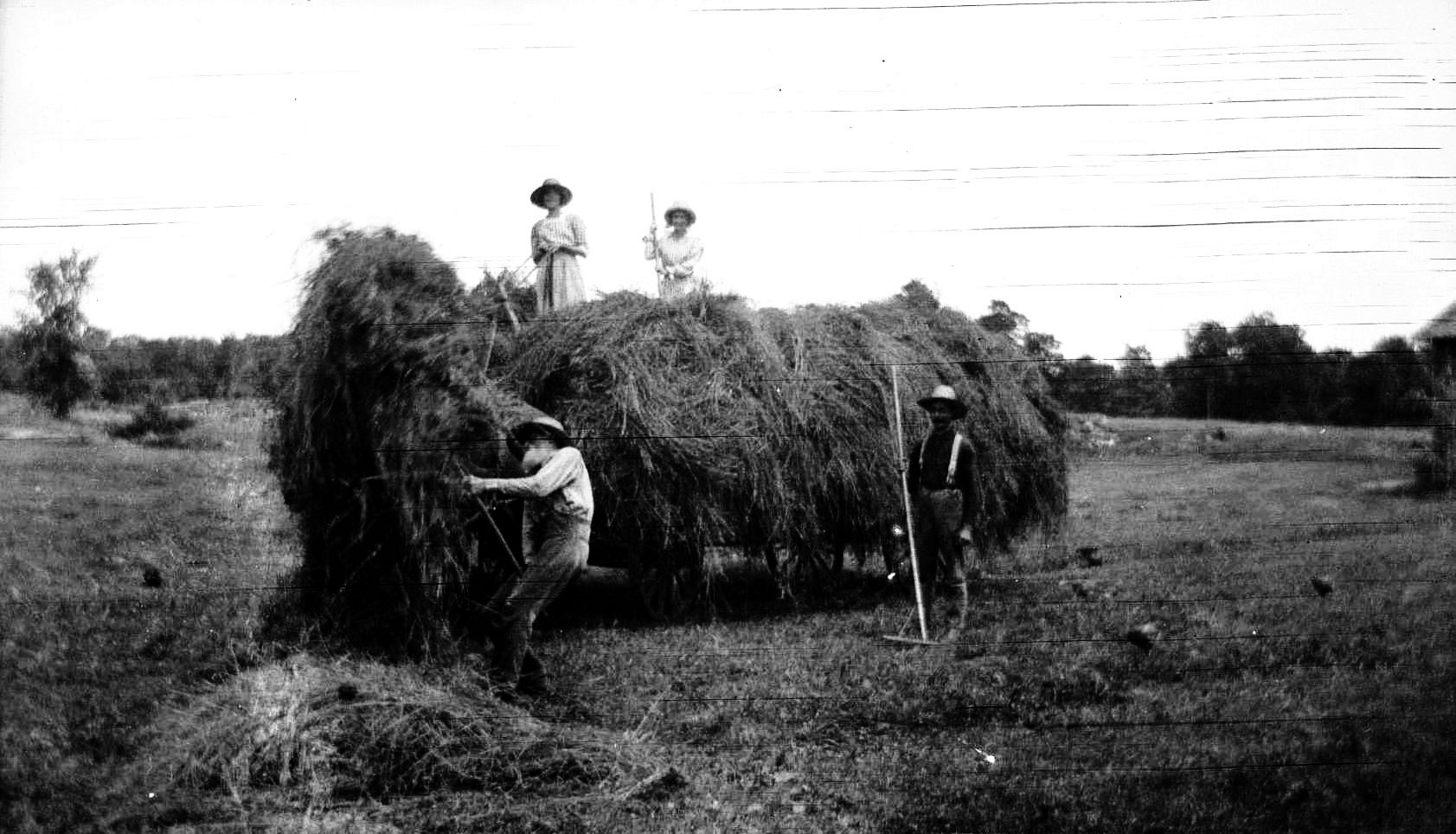 threshing in germania 1